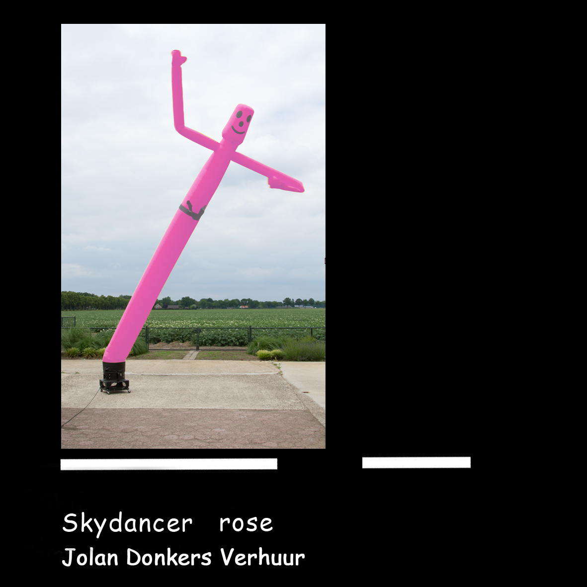skytube rose 1